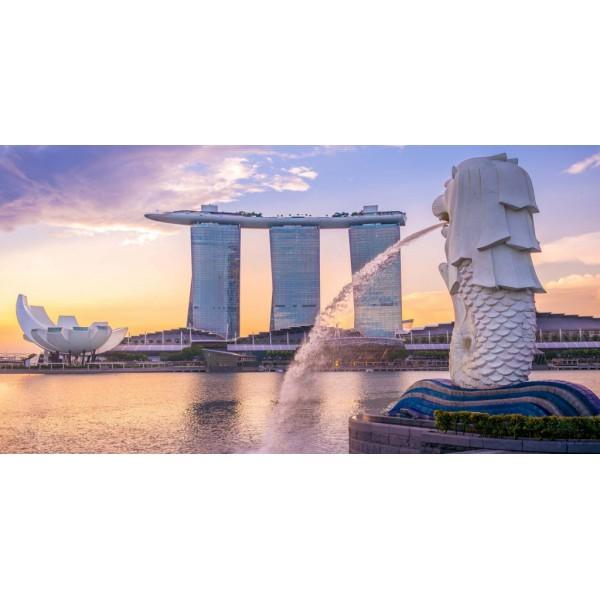 SINGAPORE CÓ PHẢI CẢNG LỚN NHẤT THẾ GIỚI ?